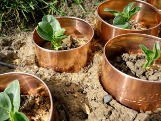 Gartenzubehör-Praktisches & Nützliches
